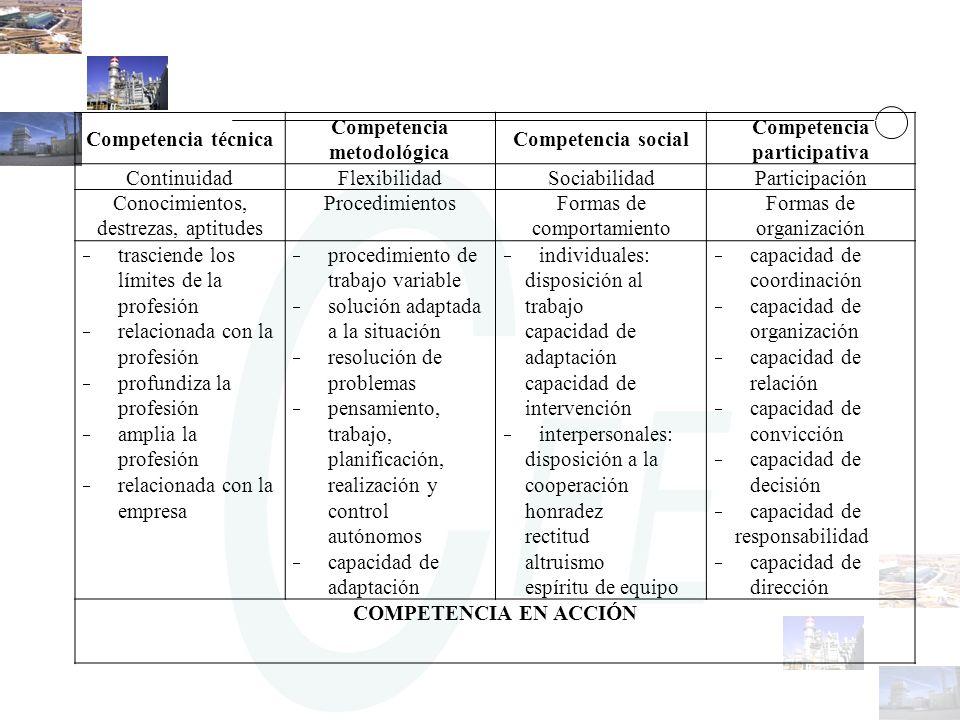 Competencia técnica Competencia. metodológica. Competencia social. participativa. Continuidad. Flexibilidad.