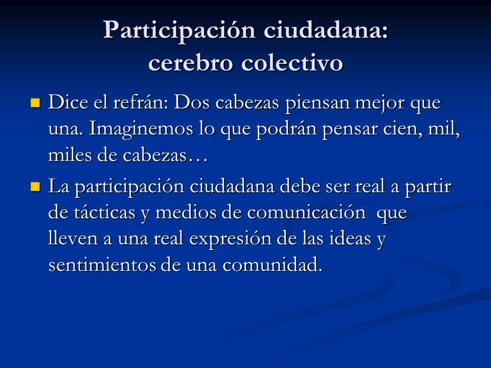 Participación ciudadana: cerebro colectivo