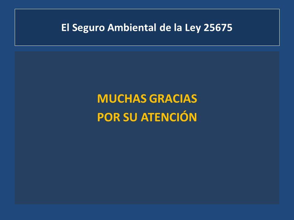 El Seguro Ambiental de la Ley 25675