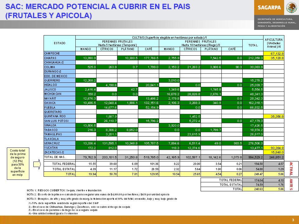 SAC: MERCADO POTENCIAL A CUBRIR EN EL PAIS (FRUTALES Y APICOLA)