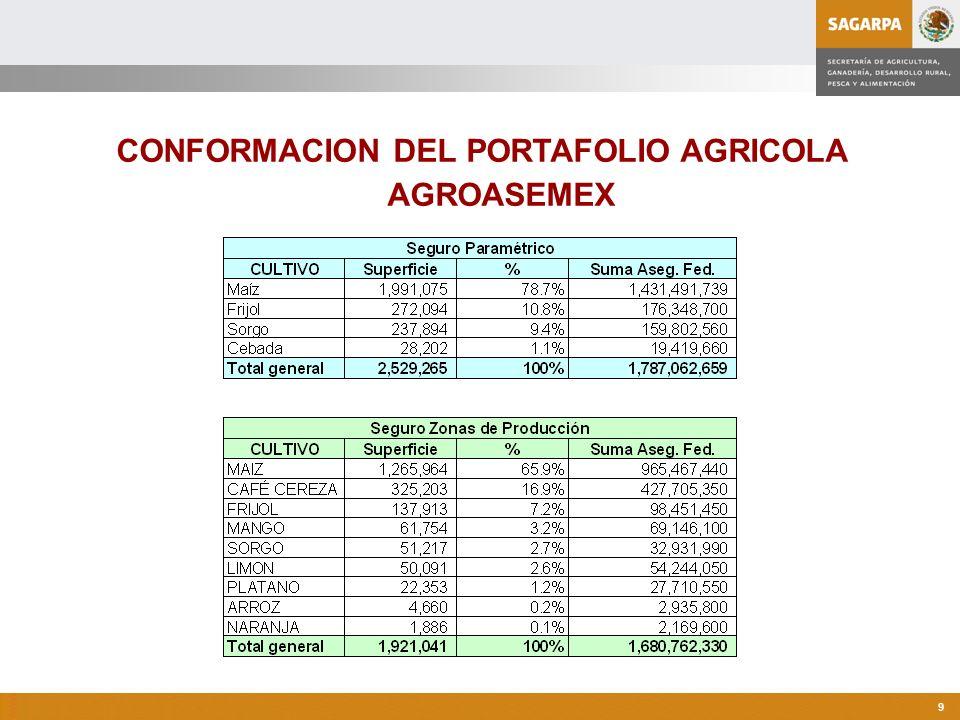 CONFORMACION DEL PORTAFOLIO AGRICOLA AGROASEMEX
