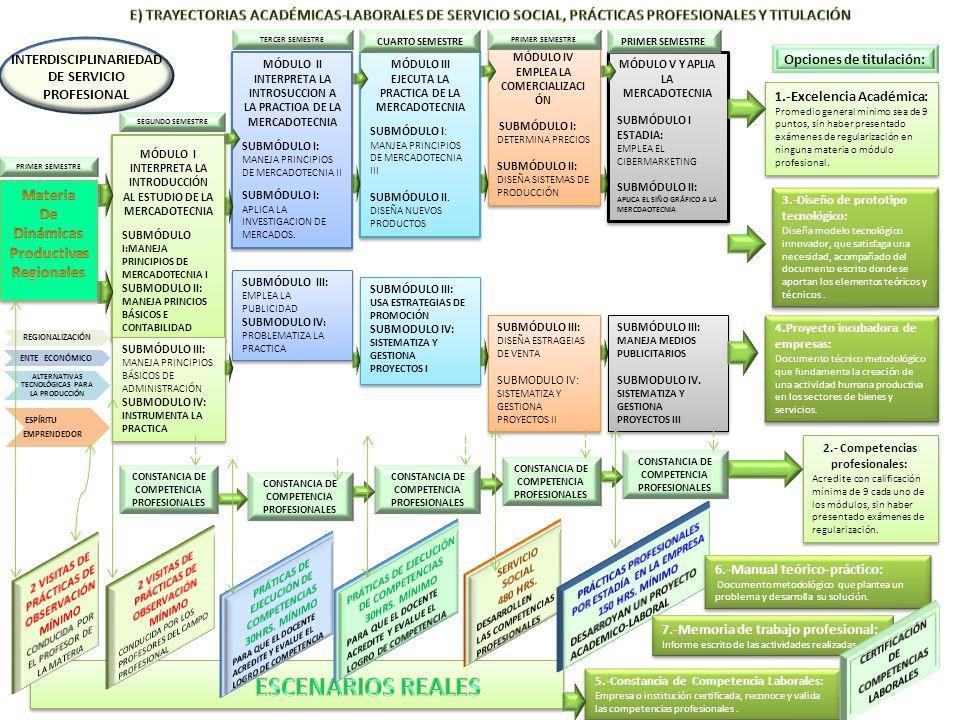 E) TRAYECTORIAS ACADÉMICAS-LABORALES DE SERVICIO SOCIAL, PRÁCTICAS PROFESIONALES Y TITULACIÓN