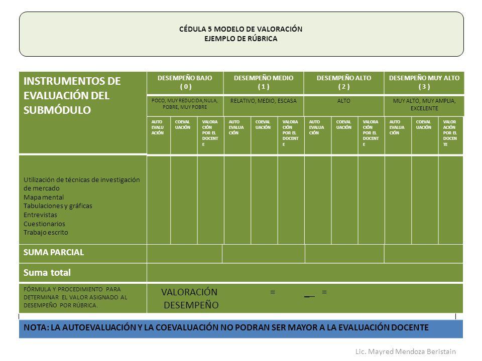 CÉDULA 5 MODELO DE VALORACIÓN