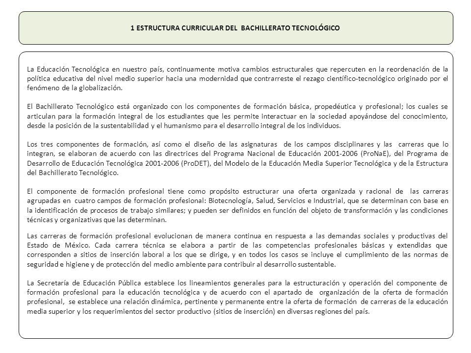 1 ESTRUCTURA CURRICULAR DEL BACHILLERATO TECNOLÓGICO