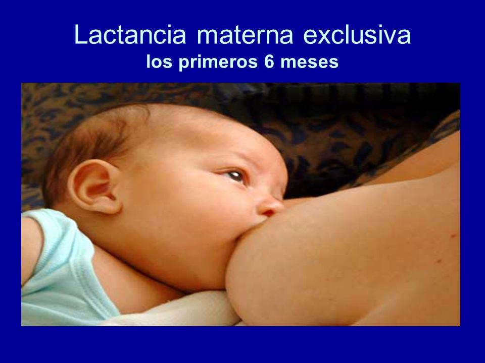 Lactancia materna exclusiva los primeros 6 meses
