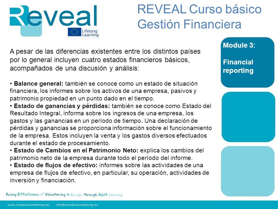 REVEAL Curso básico Gestión Financiera Module 3: