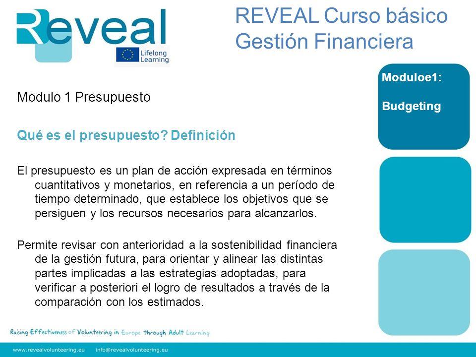 REVEAL Curso básico Gestión Financiera Modulo 1 Presupuesto