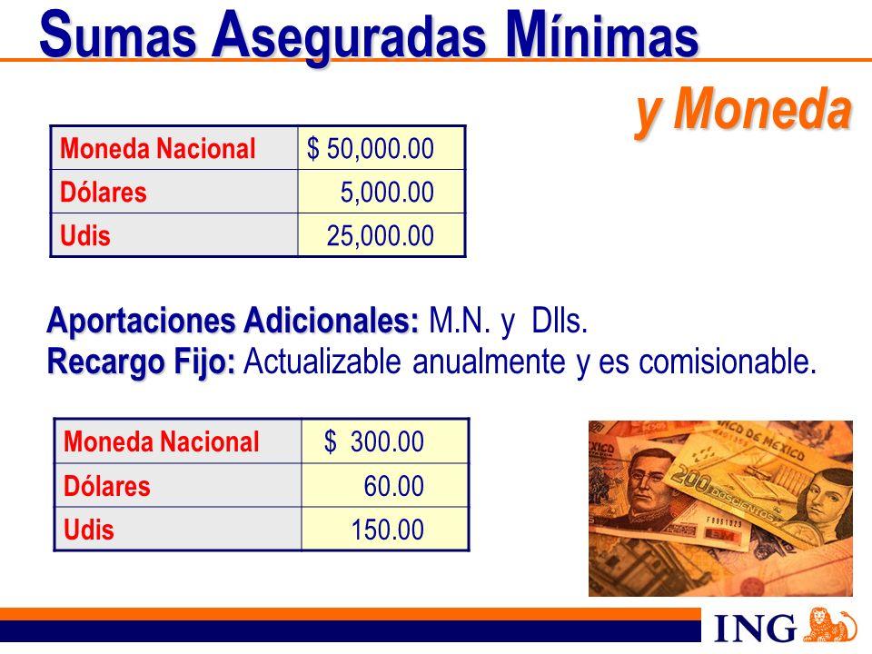 Sumas Aseguradas Mínimas y Moneda