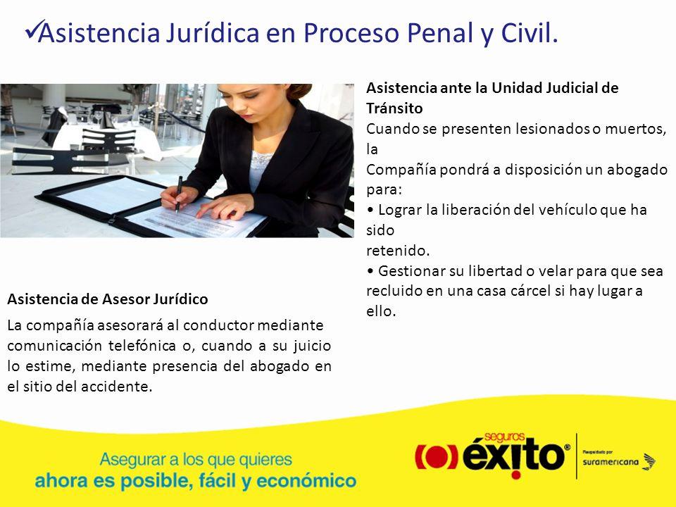 Asistencia Jurídica en Proceso Penal y Civil.
