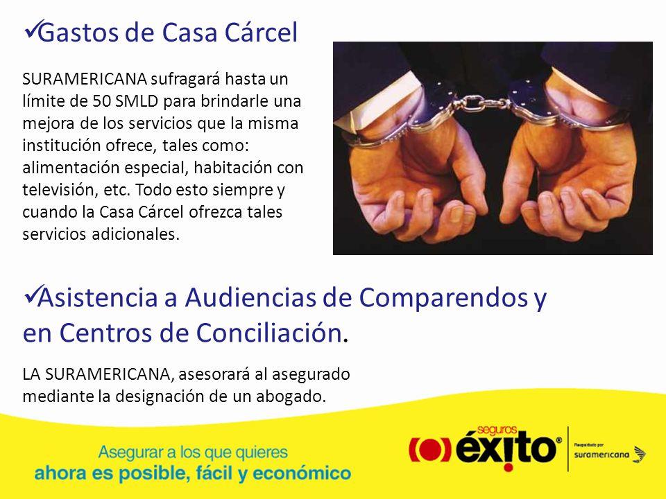Asistencia a Audiencias de Comparendos y en Centros de Conciliación.