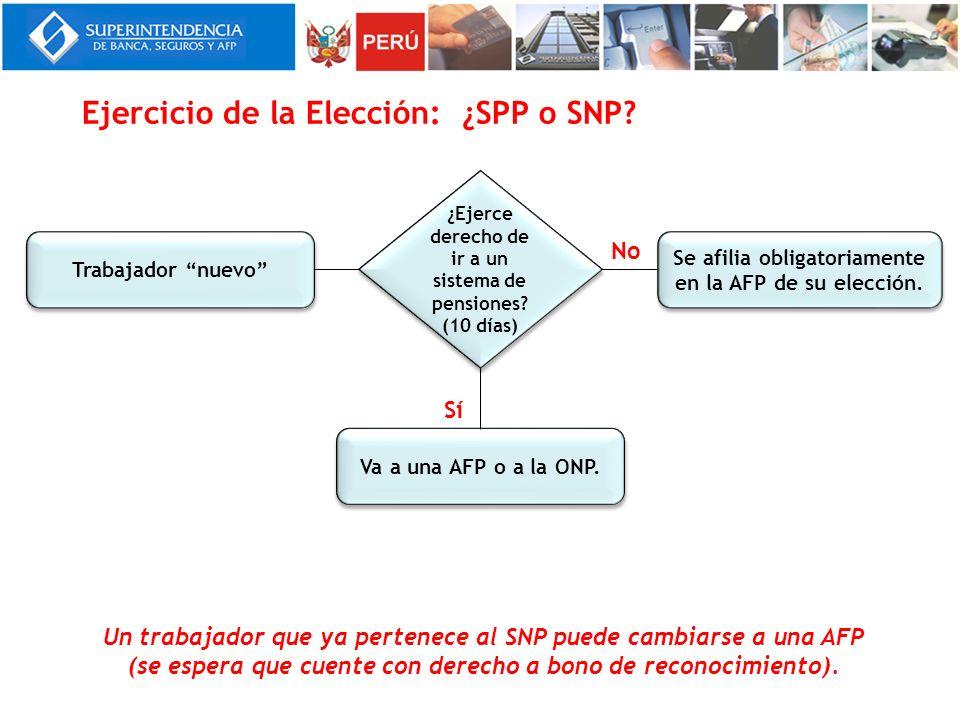 Ejercicio de la Elección: ¿SPP o SNP