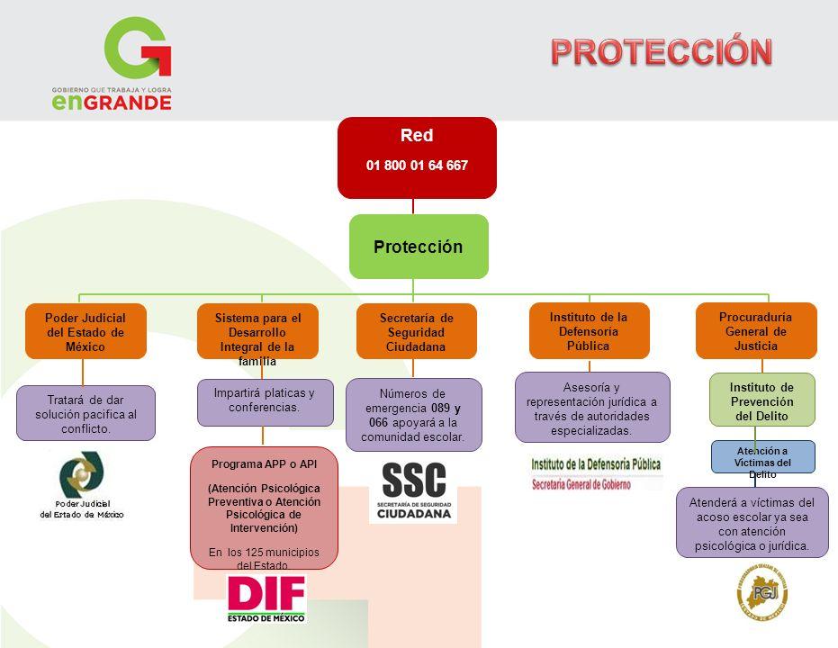 PROTECCIÓN Red Protección 01 800 01 64 667