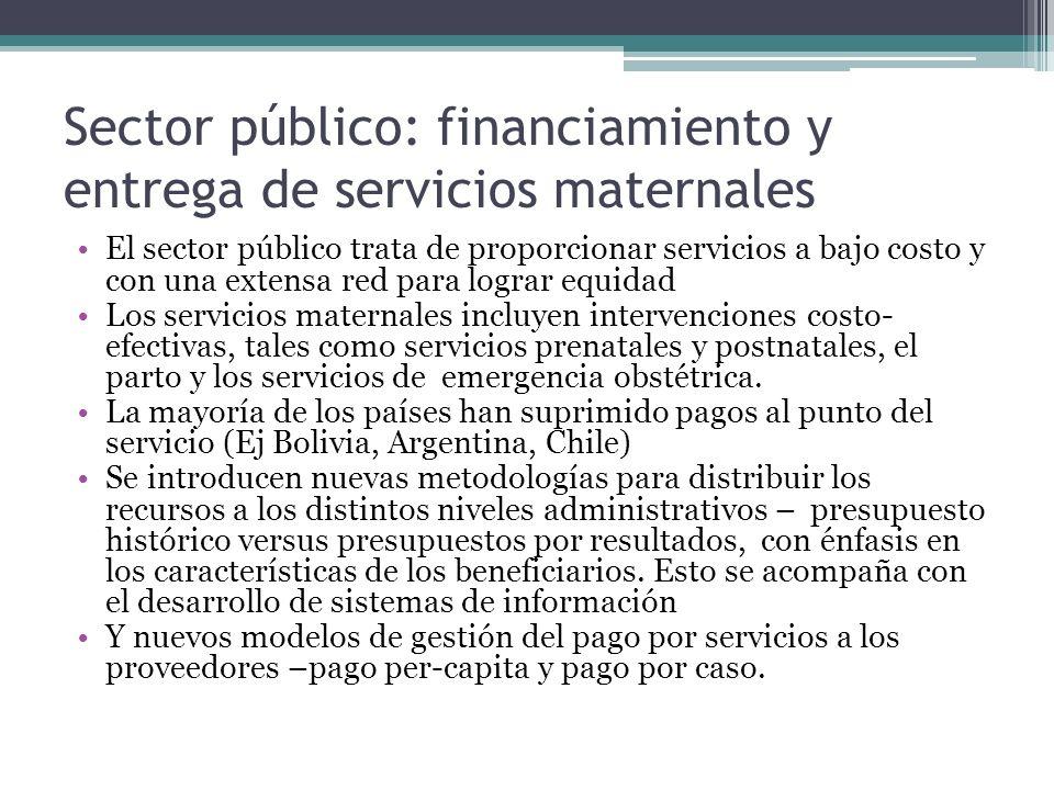 Sector público: financiamiento y entrega de servicios maternales
