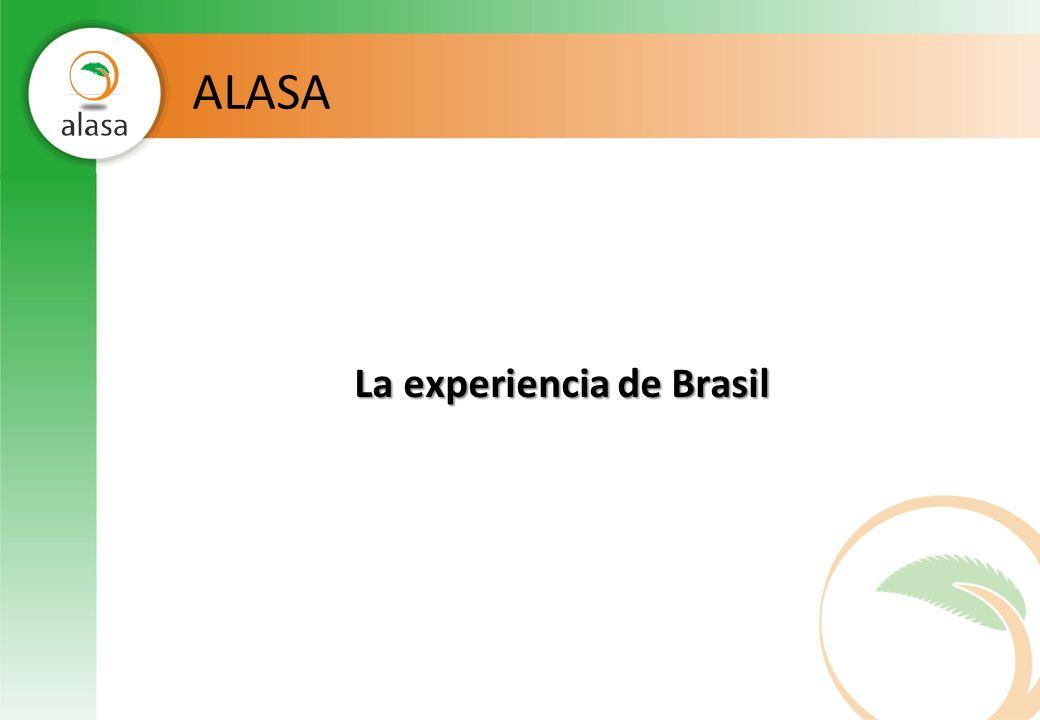 La experiencia de Brasil