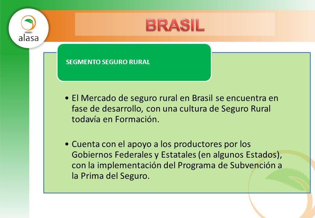 BRASIL El Mercado de seguro rural en Brasil se encuentra en fase de desarrollo, con una cultura de Seguro Rural todavía en Formación.