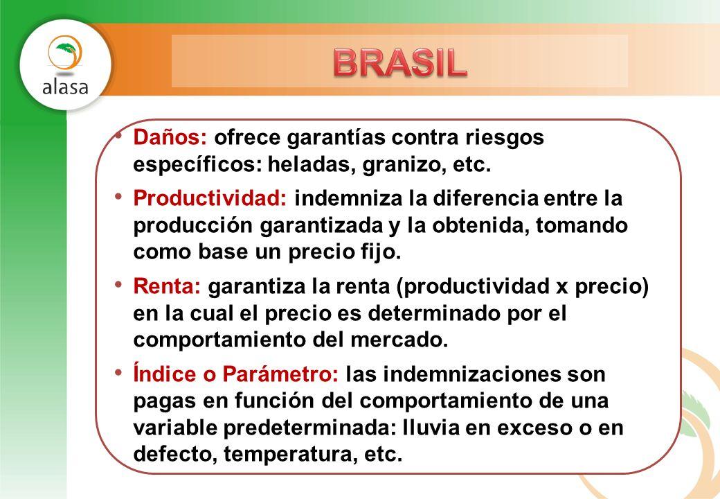 BRASIL Daños: ofrece garantías contra riesgos específicos: heladas, granizo, etc.