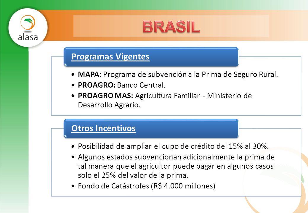 BRASIL Programas Vigentes Otros Incentivos