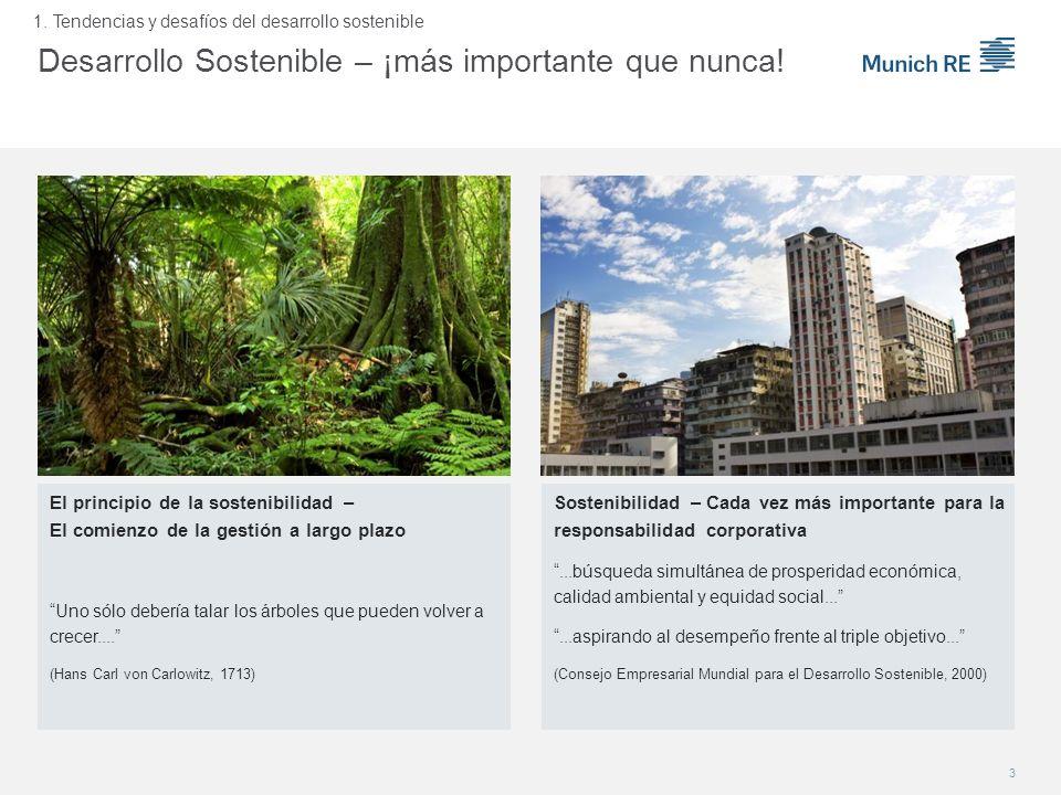 Desarrollo Sostenible – ¡más importante que nunca!