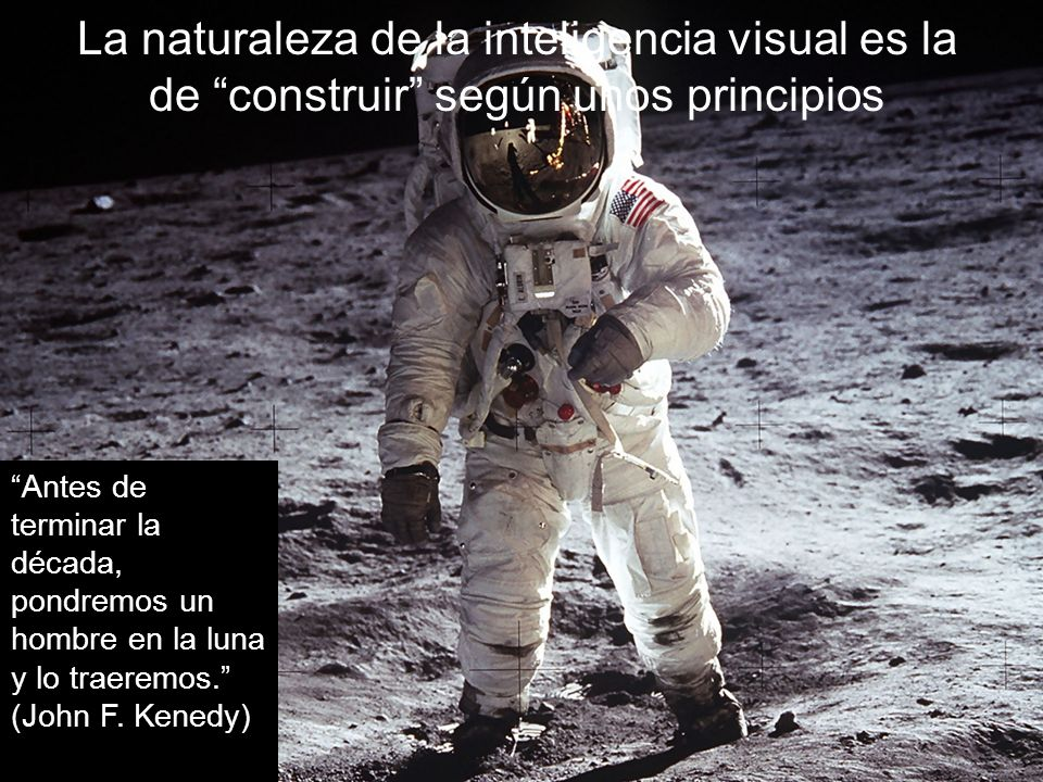 La naturaleza de la inteligencia visual es la de construir según unos principios