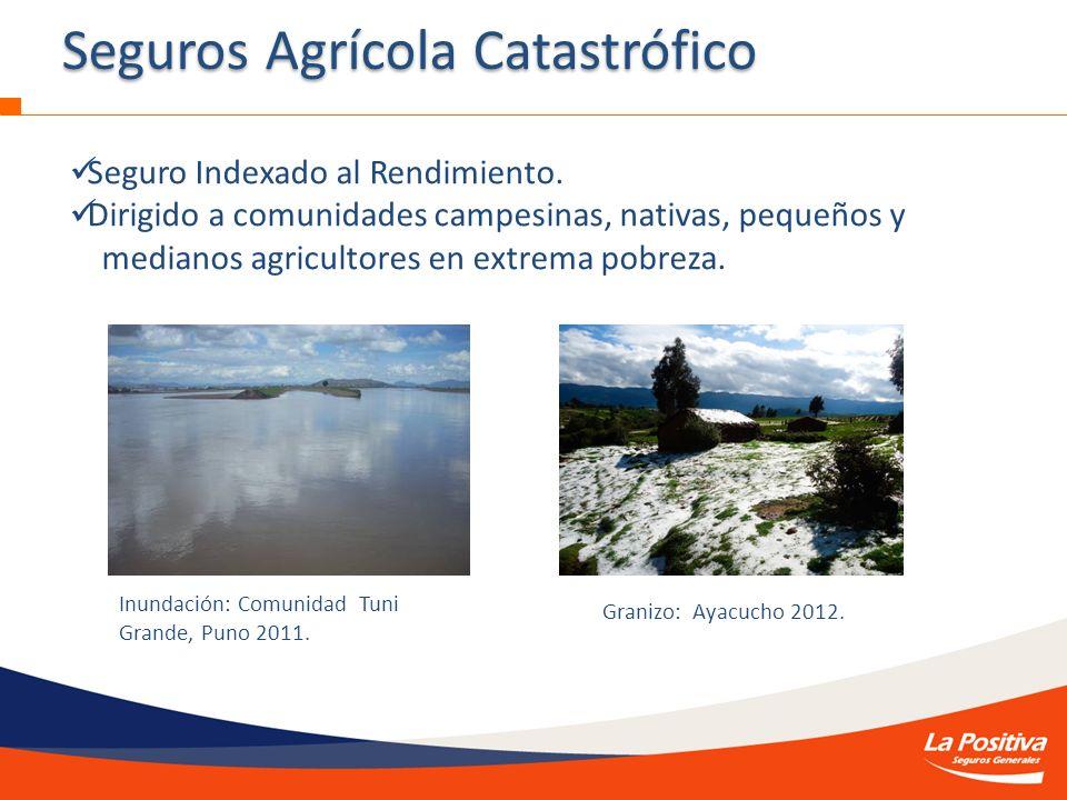 Seguros Agrícola Catastrófico
