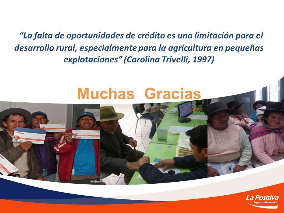 La falta de oportunidades de crédito es una limitación para el desarrollo rural, especialmente para la agricultura en pequeñas explotaciones (Carolina Trivelli, 1997) Muchas Gracias
