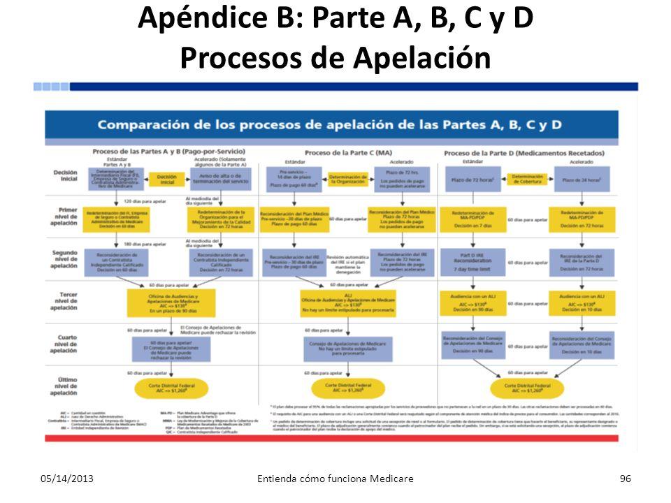 Apéndice B: Parte A, B, C y D Procesos de Apelación