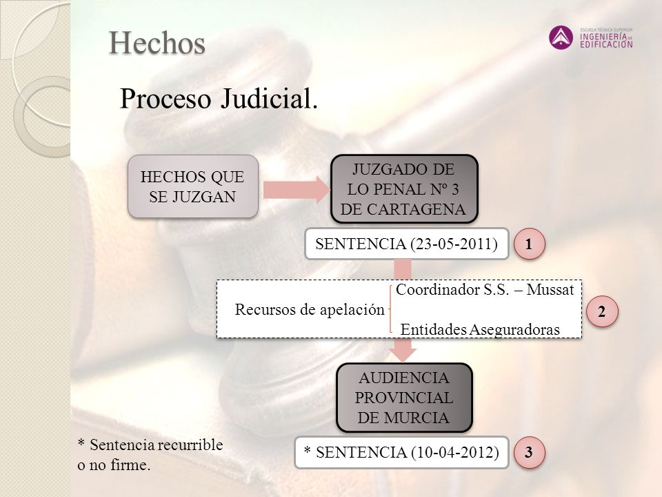 Hechos Proceso Judicial. HECHOS QUE SE JUZGAN
