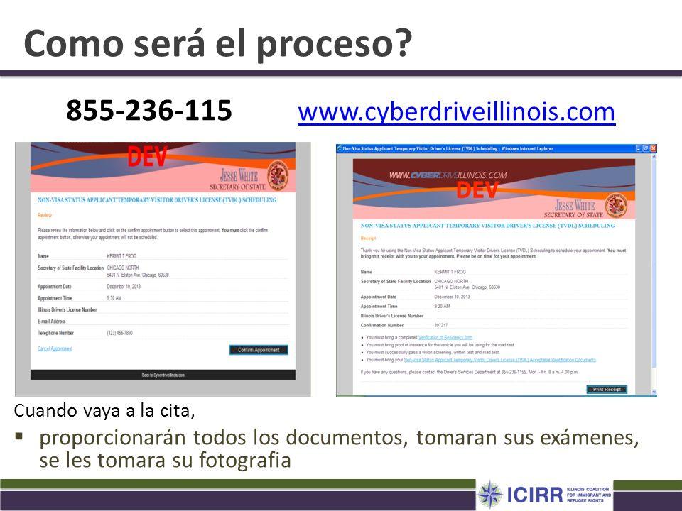 855-236-115 www.cyberdriveillinois.com