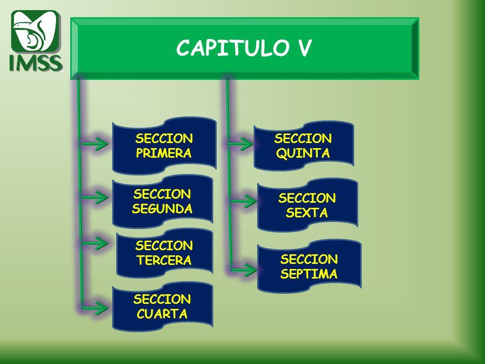CAPITULO V SECCION PRIMERA SECCION QUINTA SECCION SEGUNDA