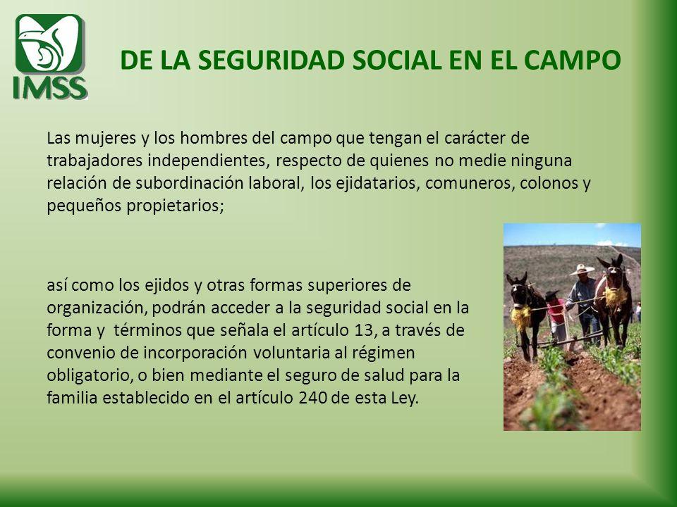DE LA SEGURIDAD SOCIAL EN EL CAMPO