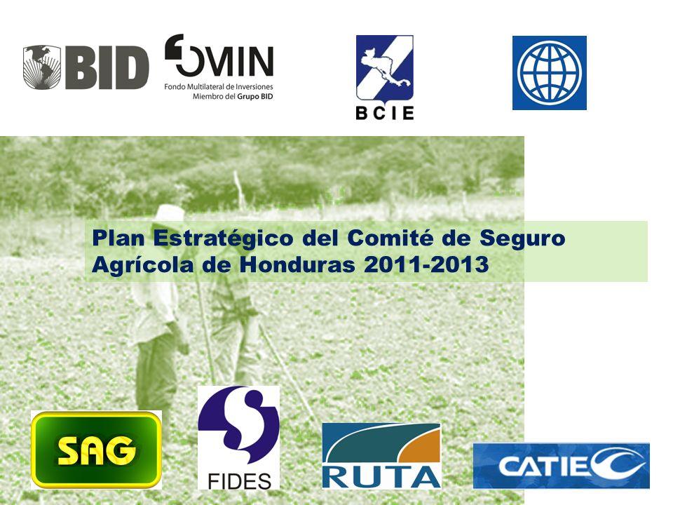 Plan Estratégico del Comité de Seguro Agrícola de Honduras 2011-2013