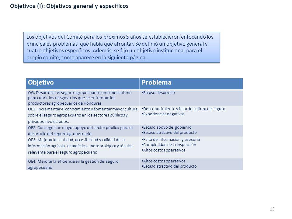 Objetivo Problema Objetivos (I): Objetivos general y específicos
