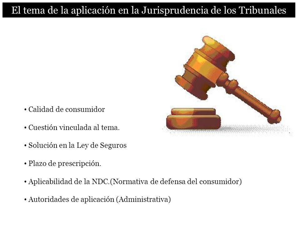 El tema de la aplicación en la Jurisprudencia de los Tribunales