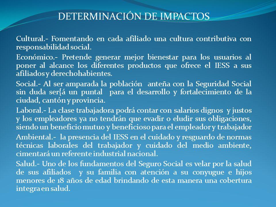 DETERMINACIÓN DE IMPACTOS