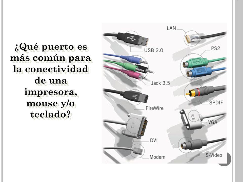 ¿Qué puerto es más común para la conectividad de una impresora, mouse y/o teclado