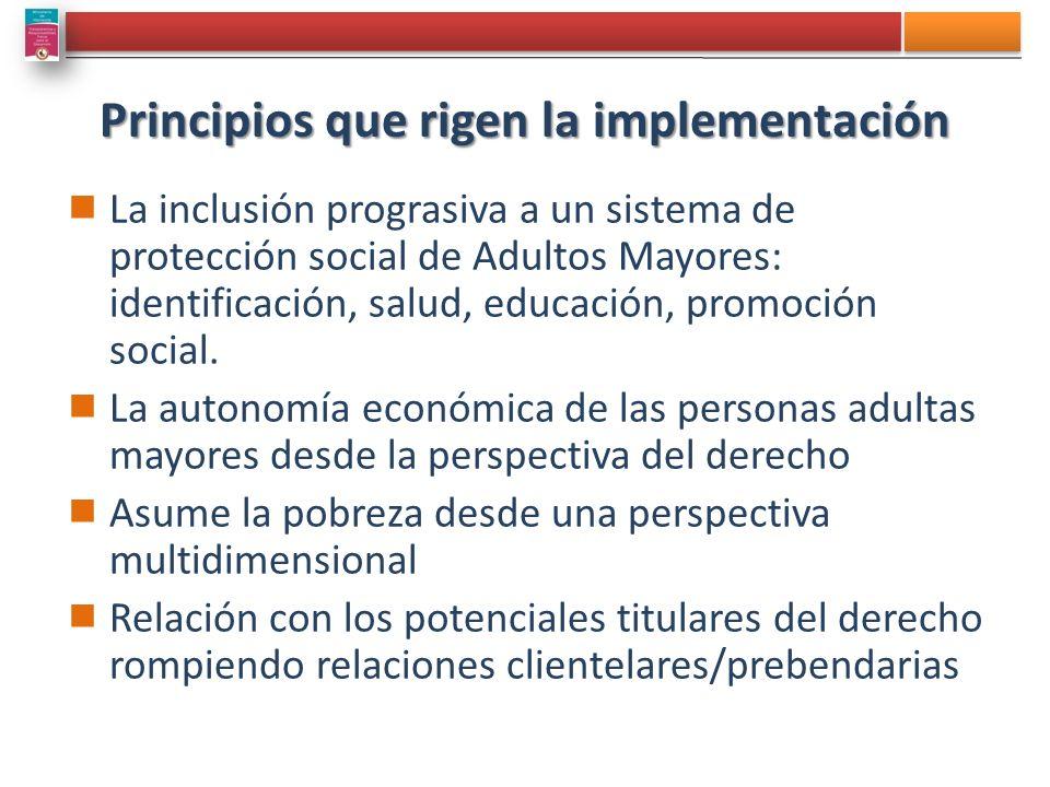 Principios que rigen la implementación