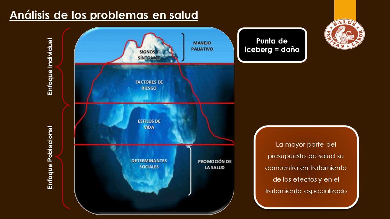Análisis de los problemas en salud