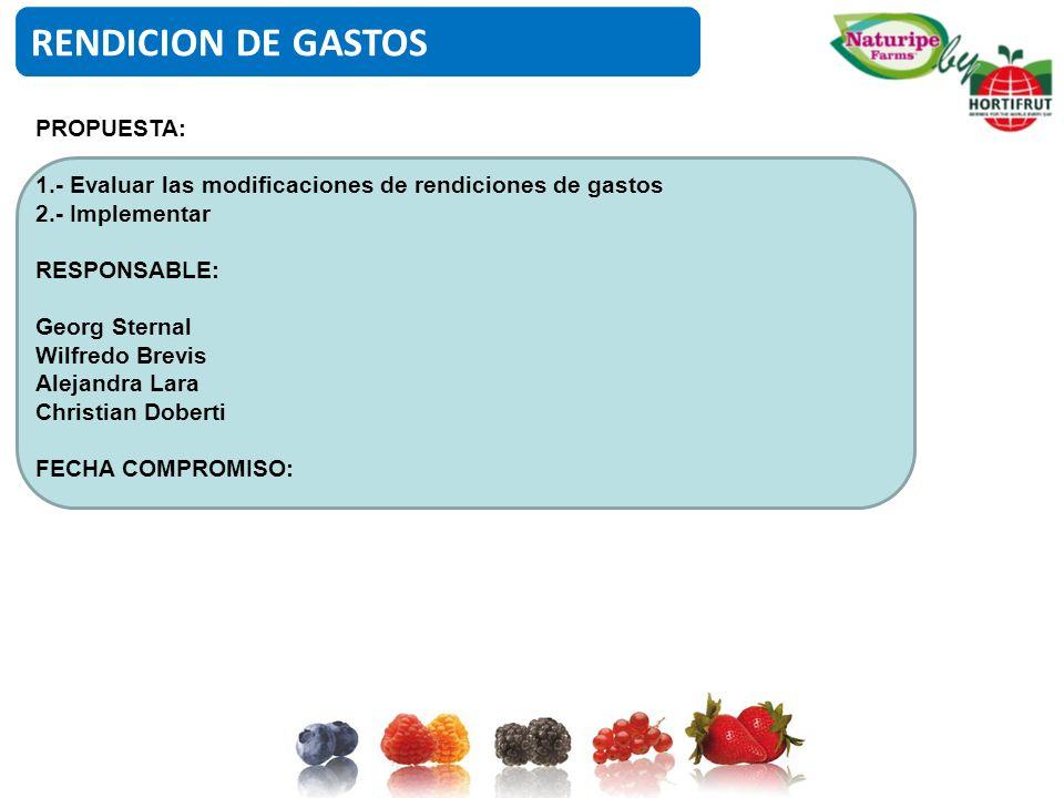RENDICION DE GASTOS PROPUESTA: