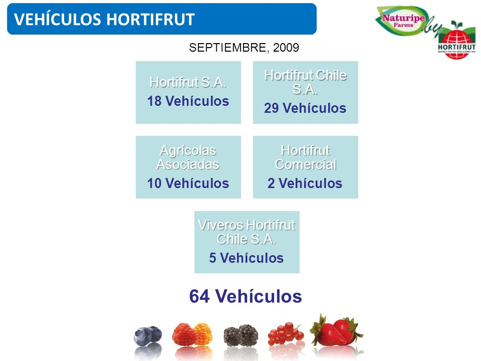 Viveros Hortifrut Chile S.A.