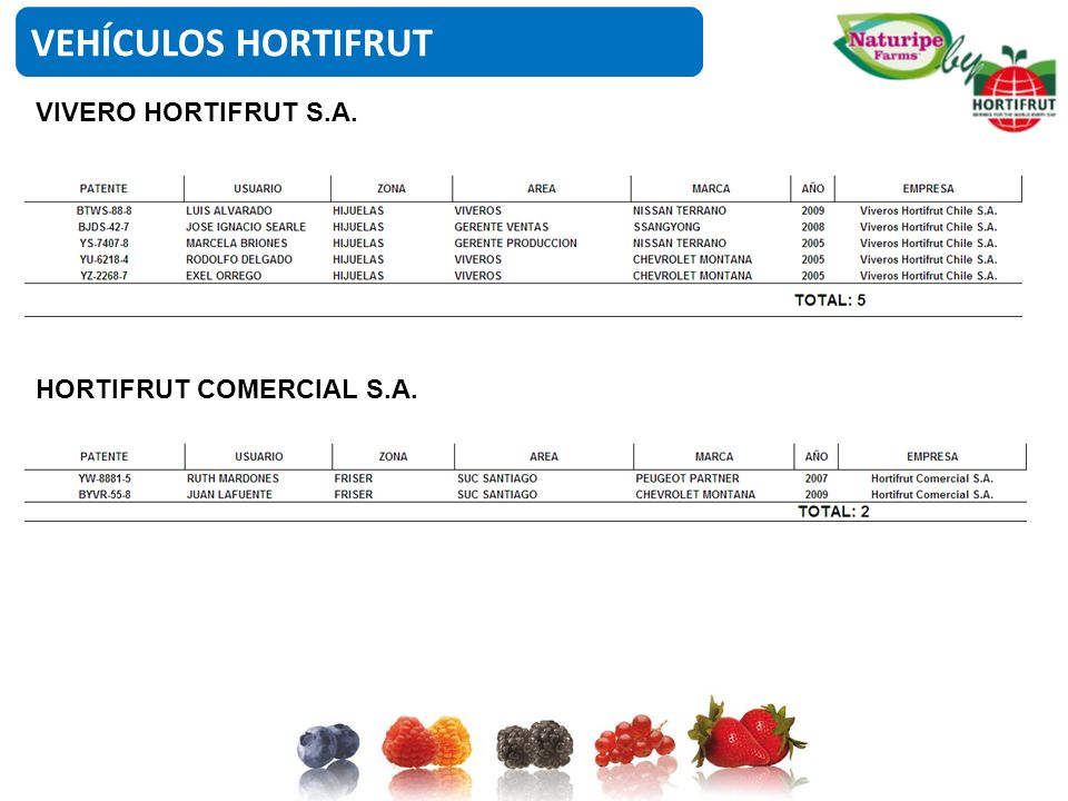 VEHÍCULOS HORTIFRUT VIVERO HORTIFRUT S.A. HORTIFRUT COMERCIAL S.A.