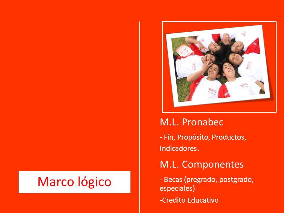 Marco lógico M.L. Pronabec M.L. Componentes