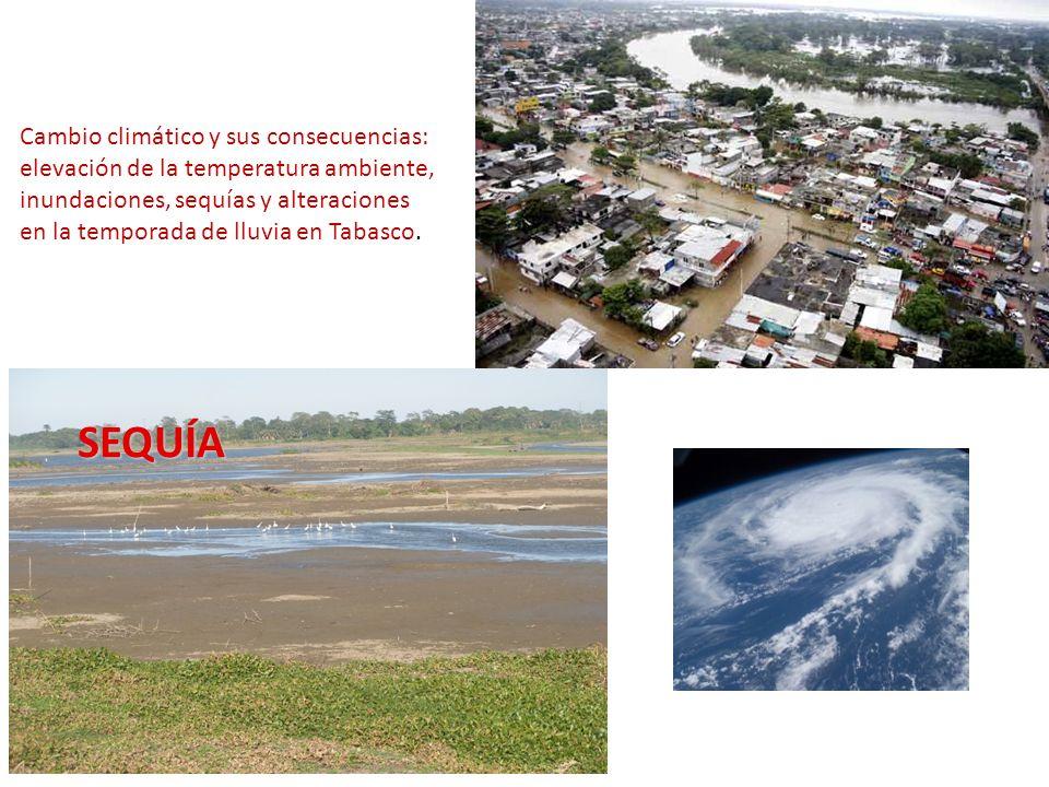 Cambio climático y sus consecuencias: elevación de la temperatura ambiente, inundaciones, sequías y alteraciones en la temporada de lluvia en Tabasco.