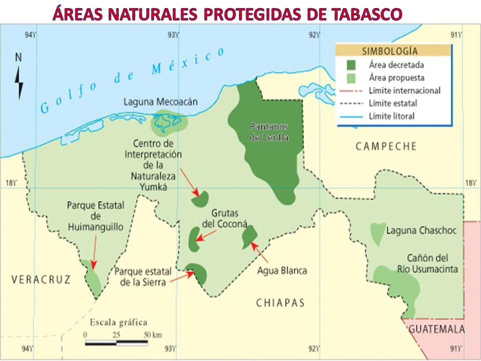 ÁREAS NATURALES PROTEGIDAS DE TABASCO