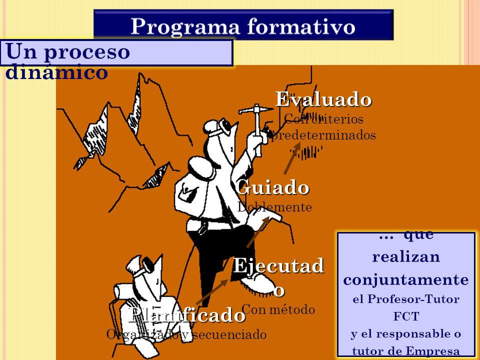 Programa formativo Un proceso dinámico Evaluado Con criterios Guiado