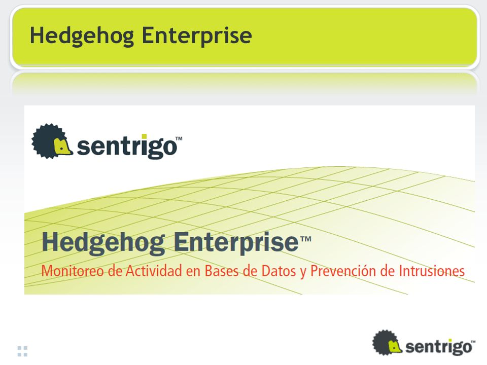 Hedgehog Enterprise 32