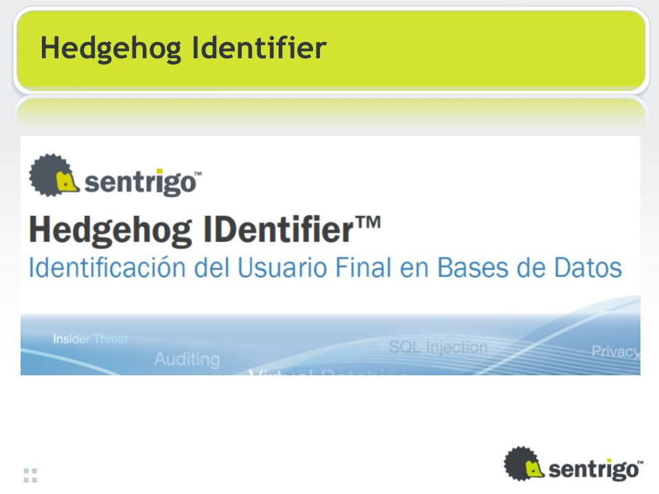 Hedgehog Identifier 34