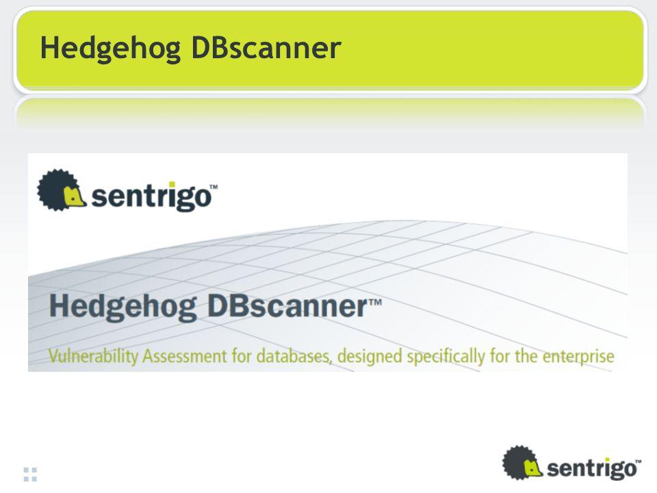 Hedgehog DBscanner 39