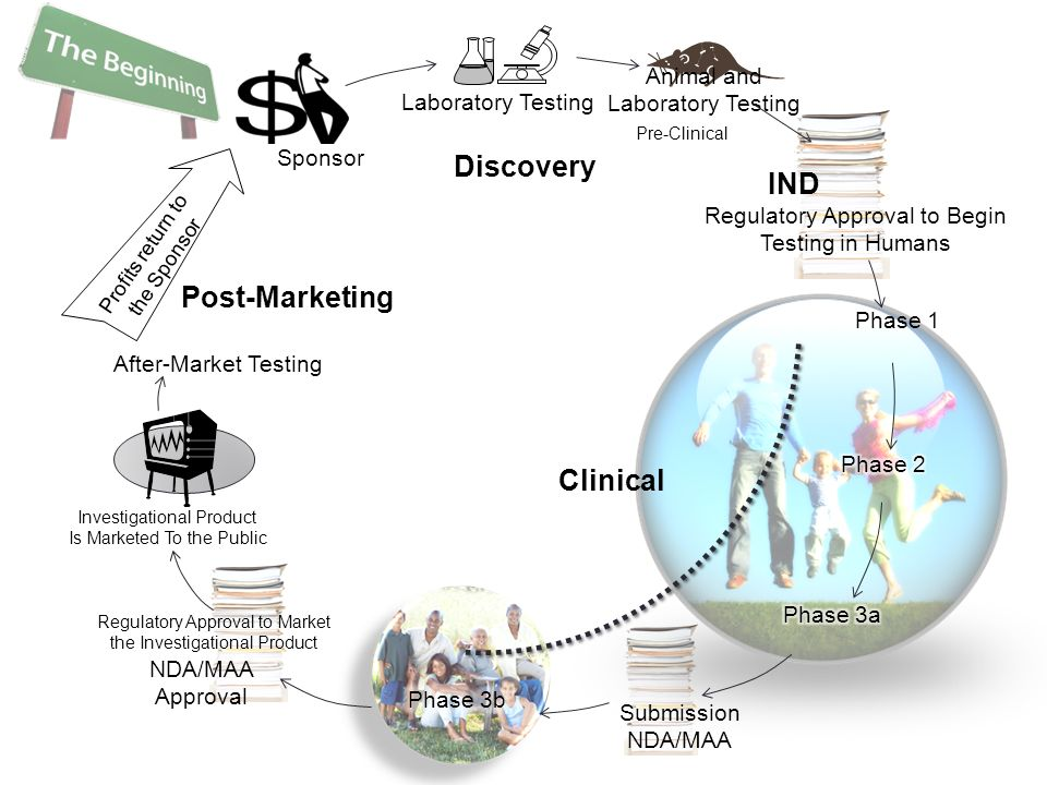 Discovery IND Post-Marketing Clinical Animal and Laboratory Testing
