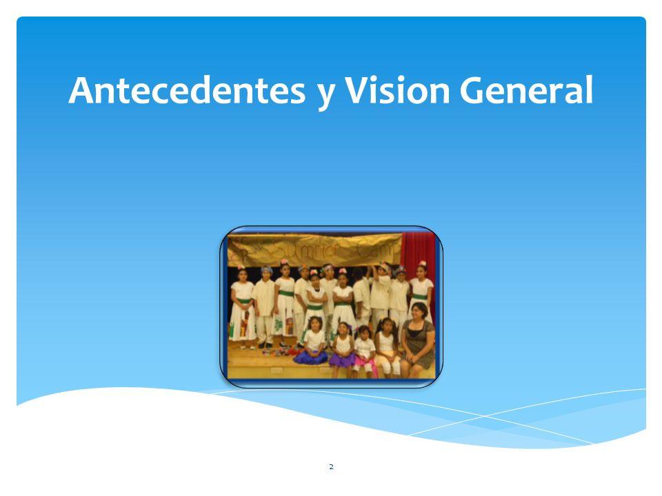 Antecedentes y Vision General