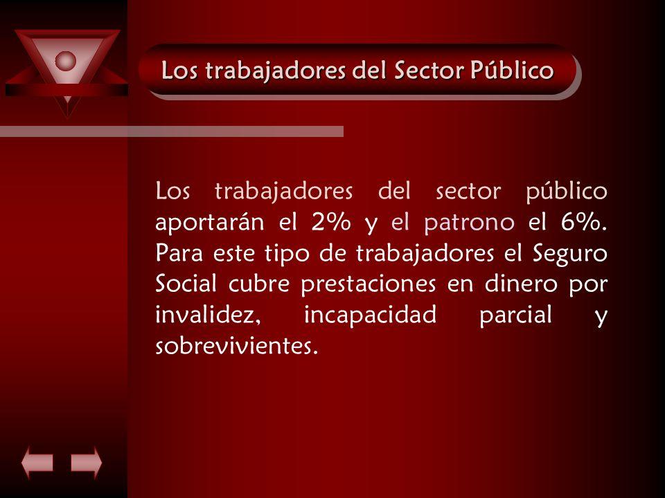 Los trabajadores del Sector Público